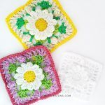 Lacy Daisy Granny Square Free Crochet Pattern