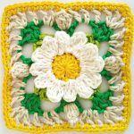 Lacy Daisy Granny Square Free Crochet Pattern2
