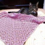 Summer Baby Blanket Free Crochet Pattern